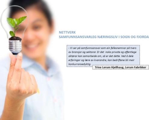 NHO S&Fj - samfunnsanvar